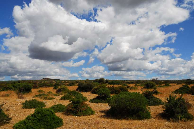Landscape-sardenia.jpg