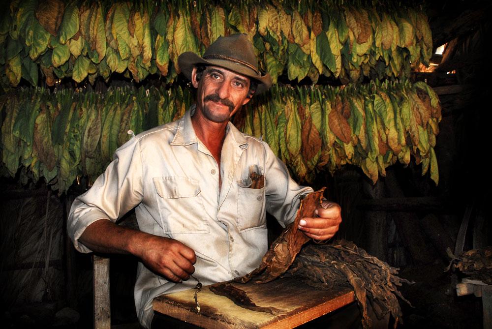 Wachsmann-1-tobaccoman-1web.jpg